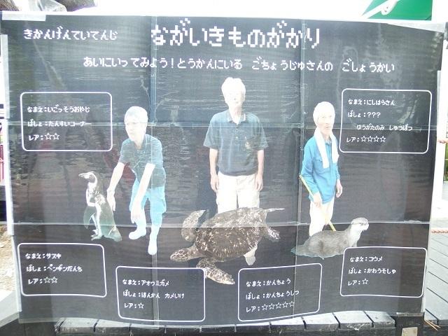 nagaikimonogakari_katsurahama_aq.jpg